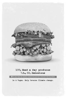 """Kiran Gangaiah Padala, Pramod B Manjarekar - India, """"Burger"""""""